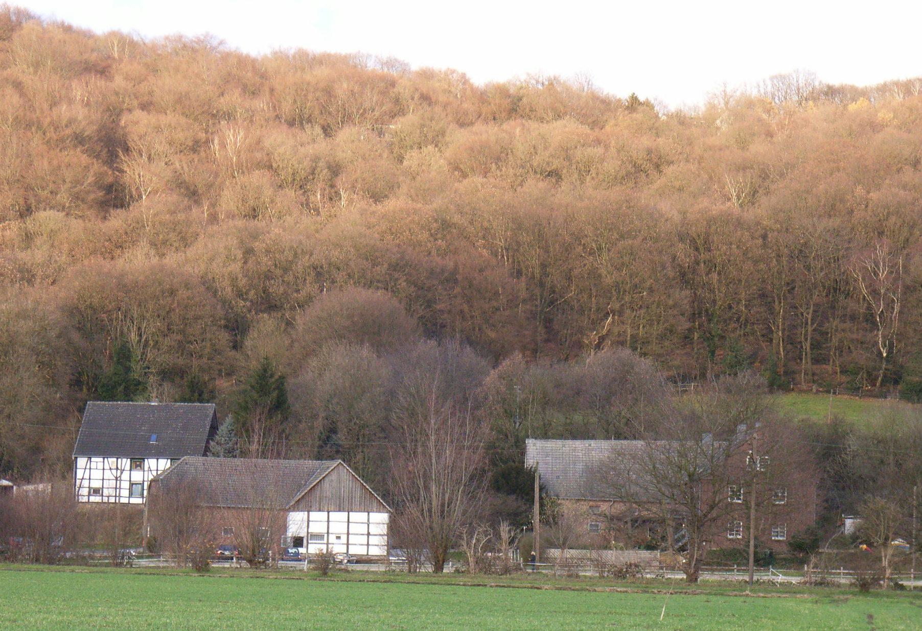 Der ehemalige Hof Henke an der Brockhauser Straße, heute im Besitz des Landwirts Große-Munkenbeck