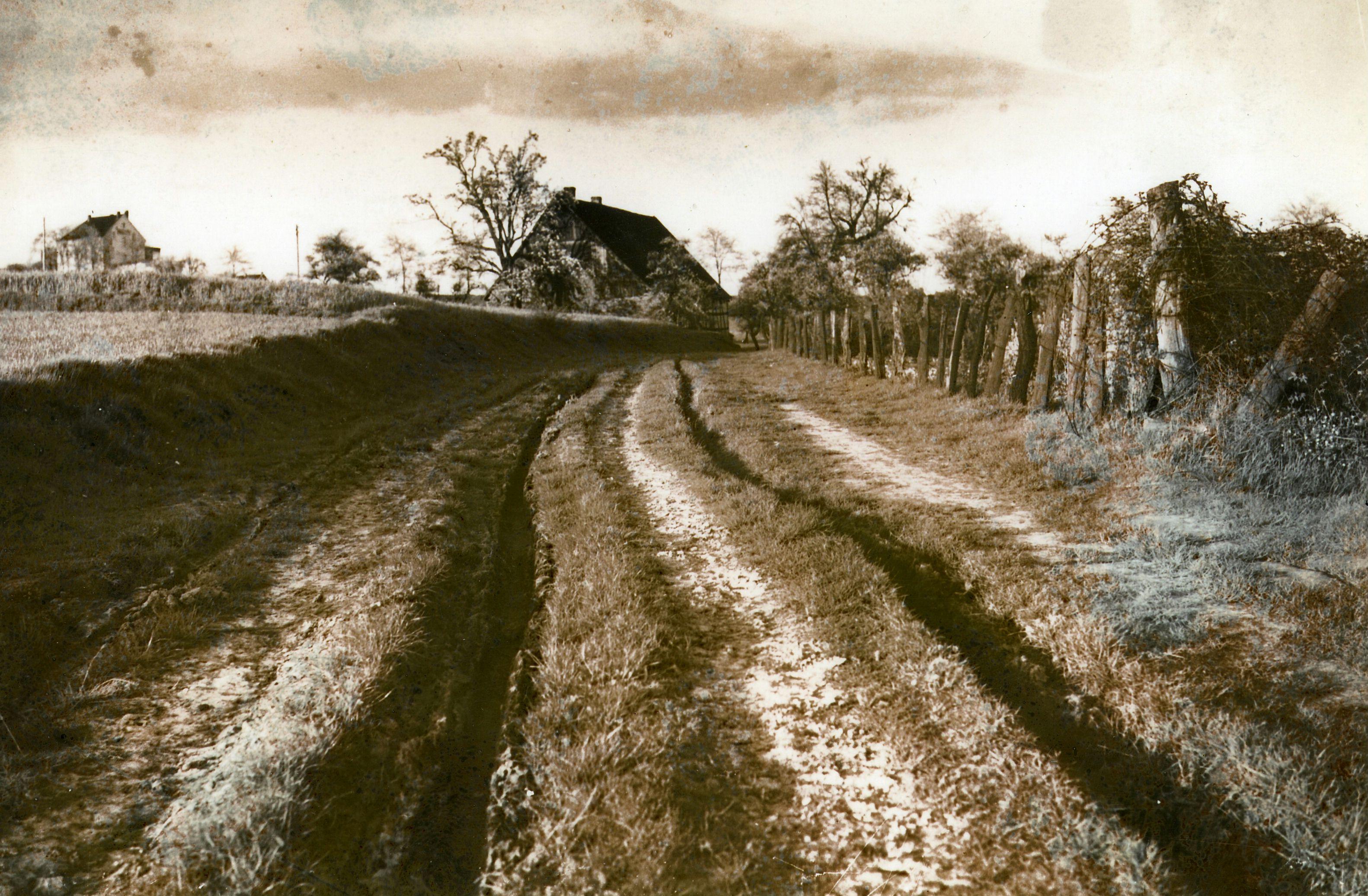 """Der obere Teil der heutigen Nettelbeckstraße mit Blick auf den alten """"Hof Nettelbeck"""". Links oben ist das als """"Gaststätte Heil"""" bekannte Haus zu erkennen (vor 1930) Foto: F. Pieper"""