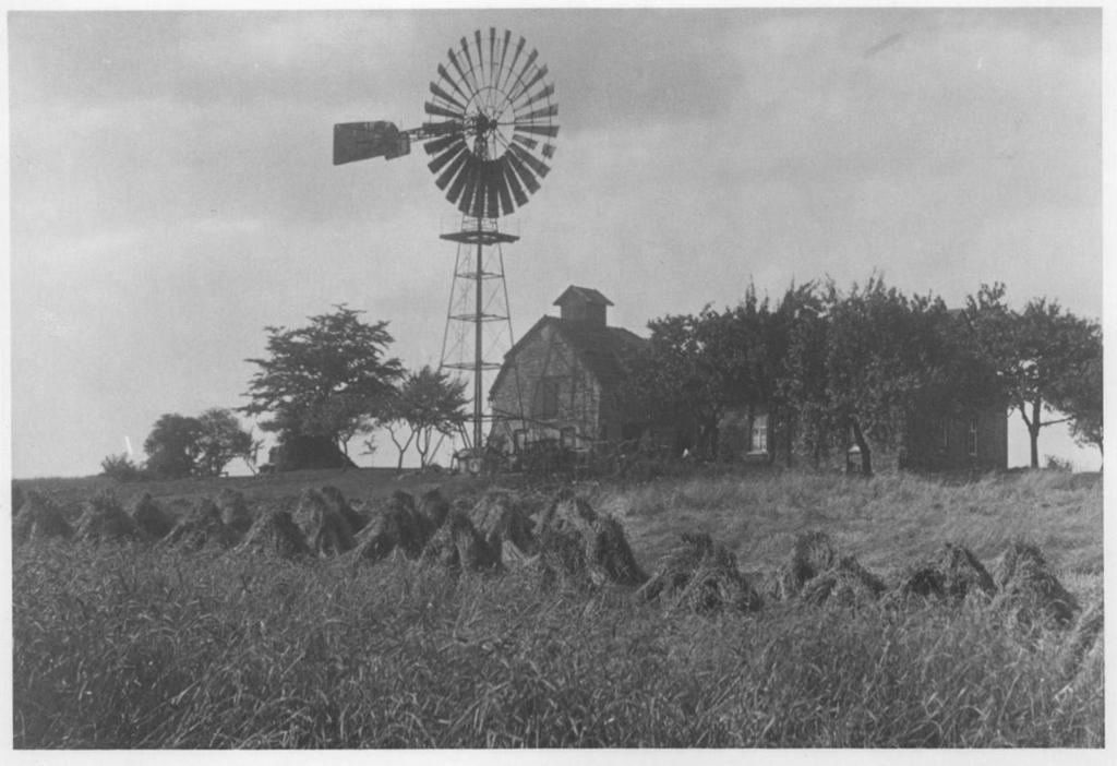Witthüsers Windmühle